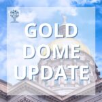 Gold Dome Update 21