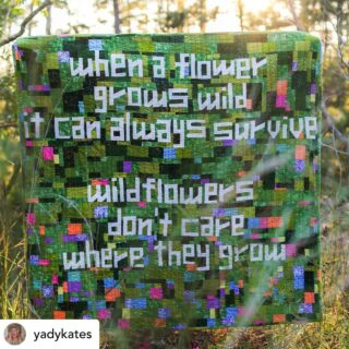 Thank you so much @yadykates for supporting New AP with this beautiful quilt giveaway! Read below for original post and details to enter and make a donation today by texting AfghanRelief to 91999.  . . . Posted @withregram • @yadykates I was going to say something cute about Dolly Parton and this quilt, but really I just want to stare at this amazing photo @kitgressard took all day. . Most quilts I make have a predetermined home, this one does not. So I thought I'd try raffling it off and see how that goes?  . @newamericanpathways does really great work in my community, and the rest of Georgia, helping to resettle and support refugees as they arrive. Every $5 you donate to them will be one chance to win the quilt, send proof to my dms or email yadykates @ gmail. I'll do the drawing in 2 weeks on October 10. . Quilt details: machine pieced and quilted, hand bound. Approx 52x51 inches, perfect size for snuggling under on a couch or an intimate picnic for 2. Lyrics from Dolly Parton's 1987 song Wildflowers.